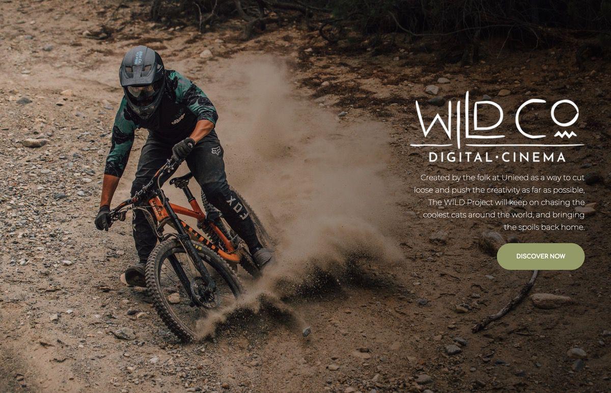 Wild-digital-cinema-banner