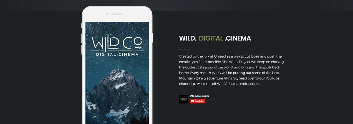 Wild-digital-cinema-page